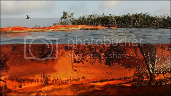 OIL SPILL in the GULF of MEXICO ....... GAIA BLEEDS BLACK!!! 100607_oil_spill_lg17