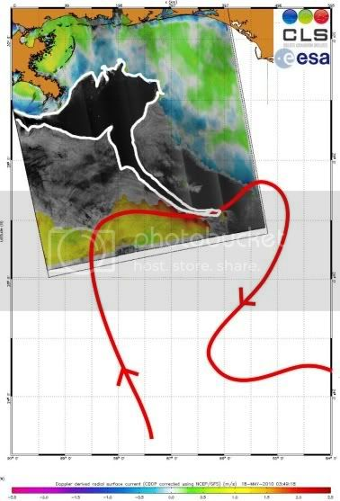 OIL SPILL in the GULF of MEXICO ....... GAIA BLEEDS BLACK!!! 7f7d0aff84dc191c292523e419895582