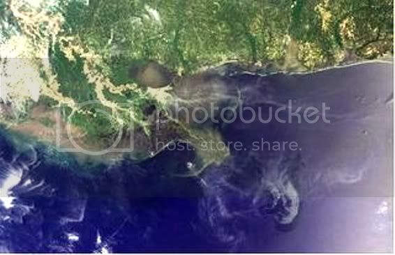 OIL SPILL in the GULF of MEXICO ....... GAIA BLEEDS BLACK!!! - Page 2 NASA_OilingulfatMiss