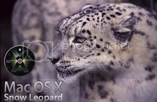 Connecting the DOTS... Snowleopard