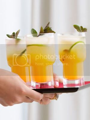 So...Today Is Your Birthday? ~ Holidays & Congratulations!!! Passion-fruit-mojitos-md