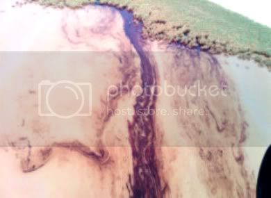 OIL SPILL in the GULF of MEXICO ....... GAIA BLEEDS BLACK!!! S-OIL-SPILL-LOOP-CURRENT-large