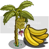 mily... Banana_Tree-icon