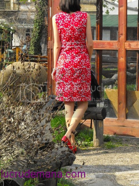 Concurs croitorie - ROCHIE PRIMAVARATICA FEMININA - Pagina 4 Spate2