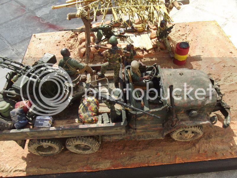 Gun truck africain - Page 3 DSCF5463_zpspnhoxopg