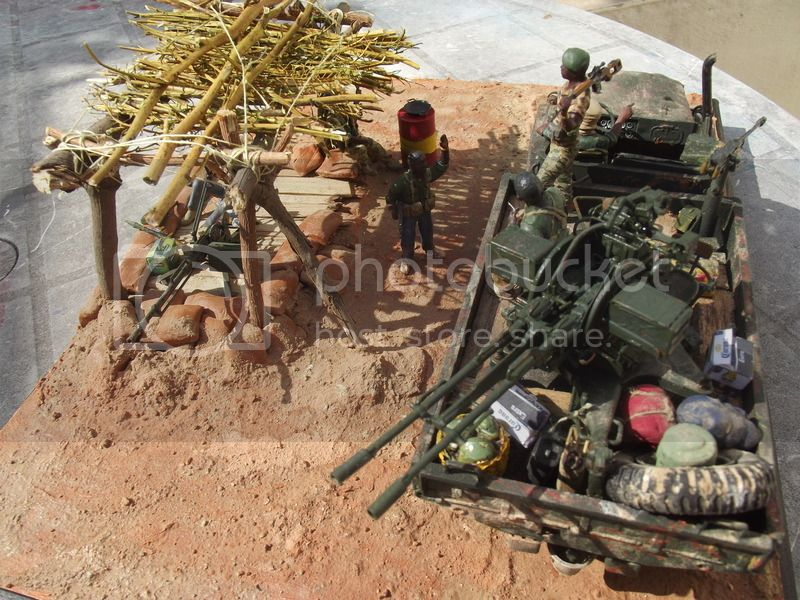 Gun truck africain - Page 3 DSCF5464_zpsykudcded