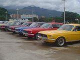 VI Encuentro Nacional de Clubes Mustang Th_380827770FHQDRb_ph