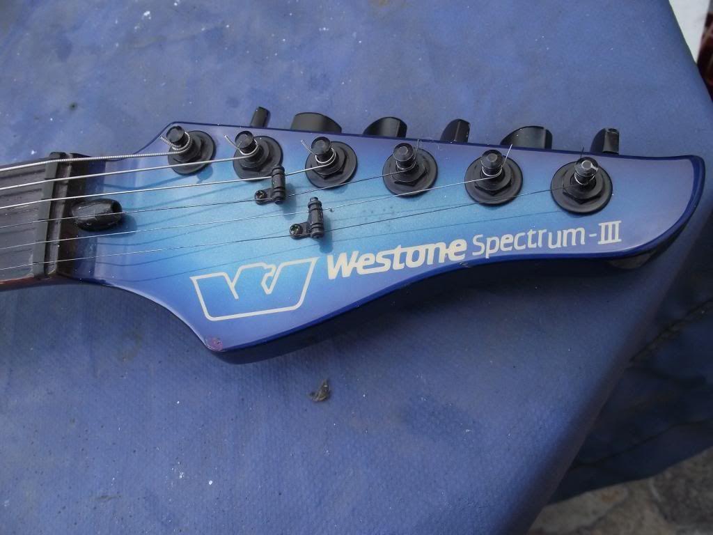 guitar - Fretless GUITAR (not bass!) on UK eBay... DSCF6513_zps391cb80b