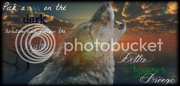 Wolf Information - Elite Breeze DeltaBreezeDD%202_zpszapsssvk