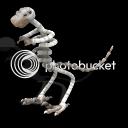 Nuevas criaturas:la buena, la mala y la fea... DinoFosil_zps754b161c