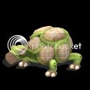 Un Brox, de la familia de los grox y varios Animales Tortugon_zps14dc57b9