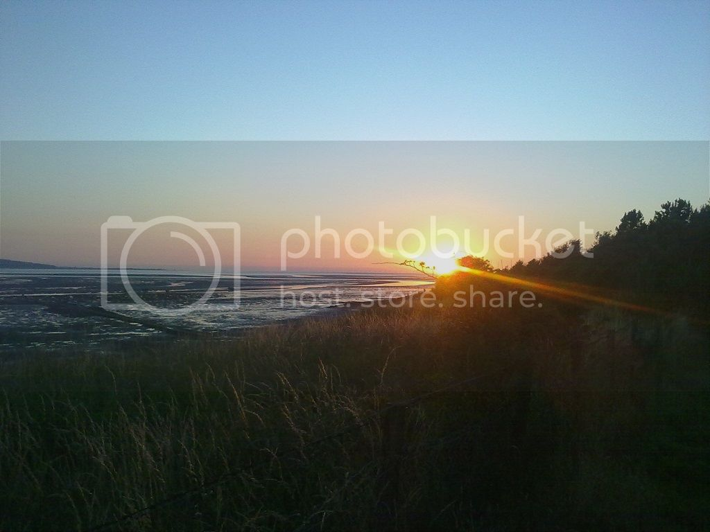 Walking the Wirral Way (lots of pics). W26_zps0179a4f5