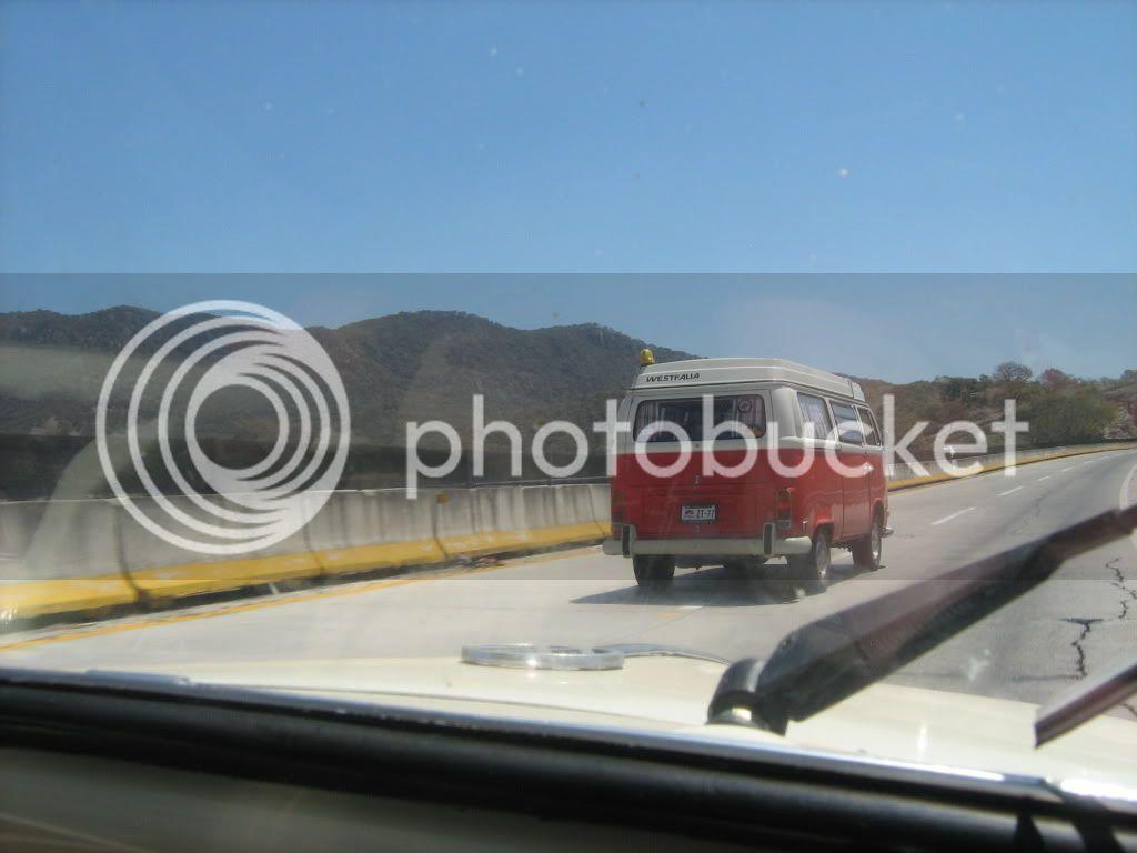FOTOS DE GUAYABOS 2010  DE LOS MEJORES ..SALU2 IMG_1986