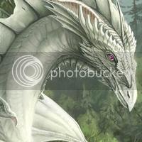 Dragões DragoBranco00