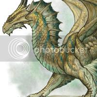 Dragões DragoBronze