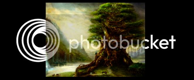Árvore Mãe RvoreMe