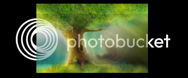 Árvore Líder RvoreLder