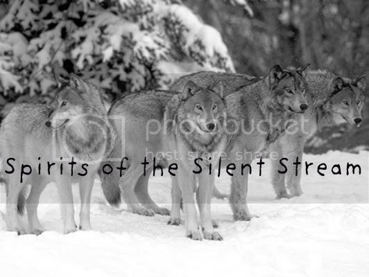 Spirits of the Silent Stream