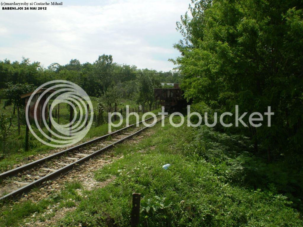 Govora - Bistrita (linie ingusta) - Pagina 2 P1010225