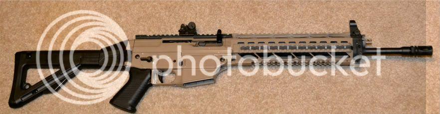 PE90 Custom Sig556