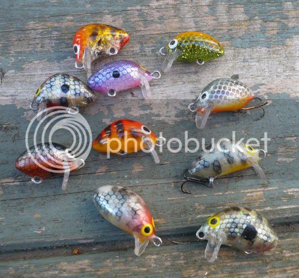 What I get upto when not fishing! Julyuls9