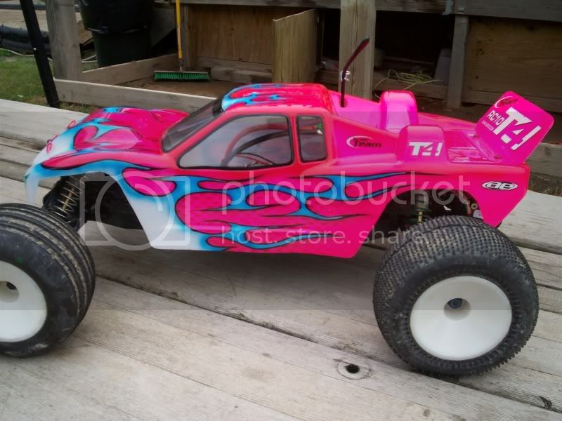 A pinkish T4 100_1002