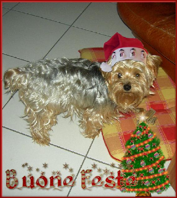 immagini Natale 2011-12-13-14-15 - Pagina 2 PuffoNatale1_zps163f6367