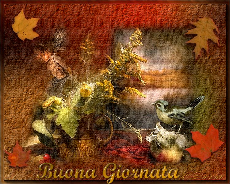 autunno immagini Ter