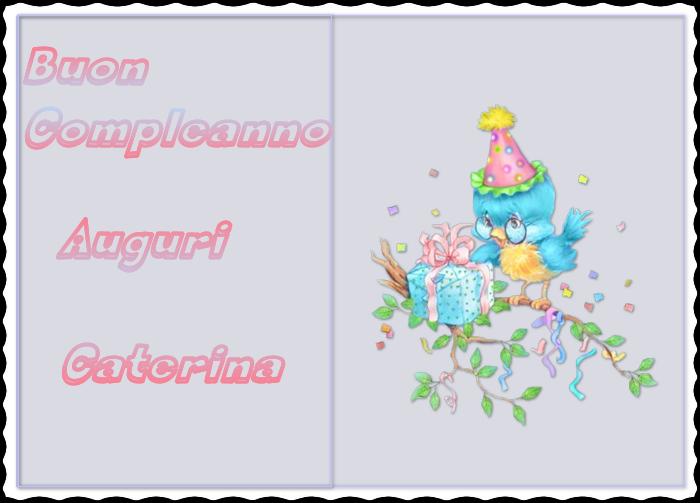 Buon Compleanno Scheggia!! Cat_zpsmr4w7atm