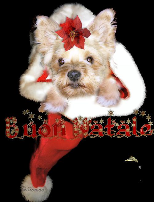 immagini Natale 2011-12-13-14-15 Puffo2