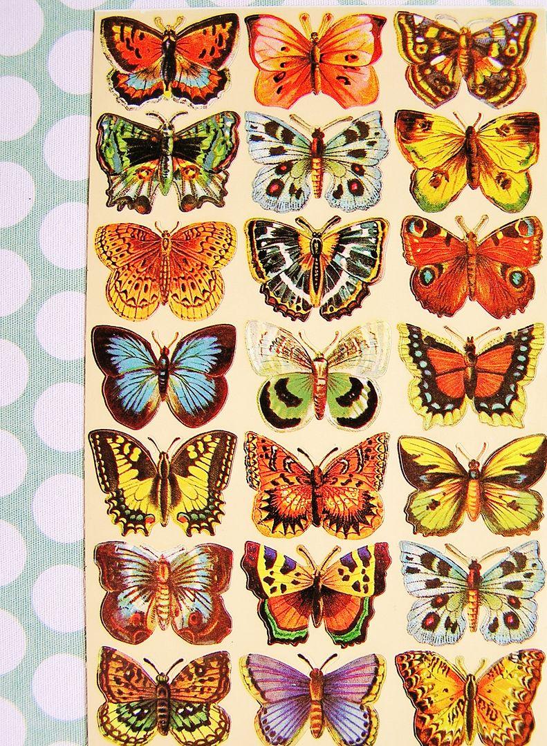 {Kits Digitais} Flores, Jardim, Primavera, Bichinhos de jardim - Página 3 Clarasboxtonewkit126