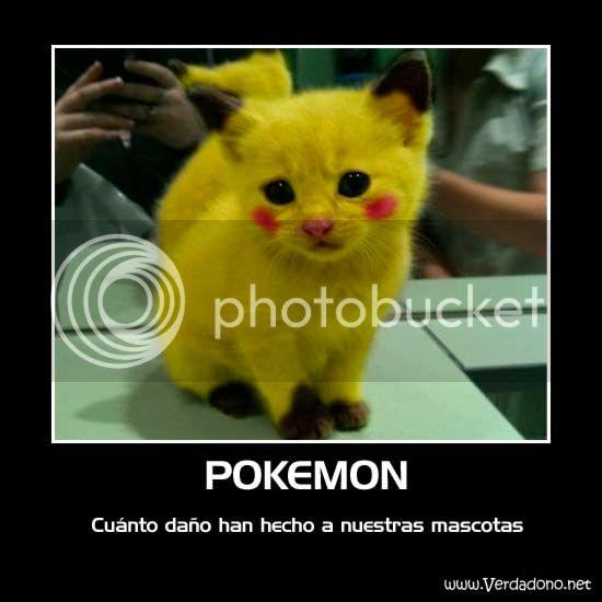 Imagenes divertidas!!! Pokemo-realistas-1