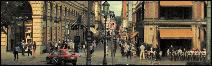 ●Calles y Avenidas●