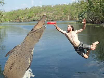 When it's ok to use the 'F' word Croc
