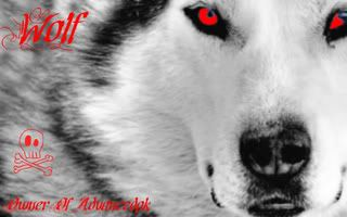 My Graphic designs Mystic_Wolf_1280x800widescreen-1