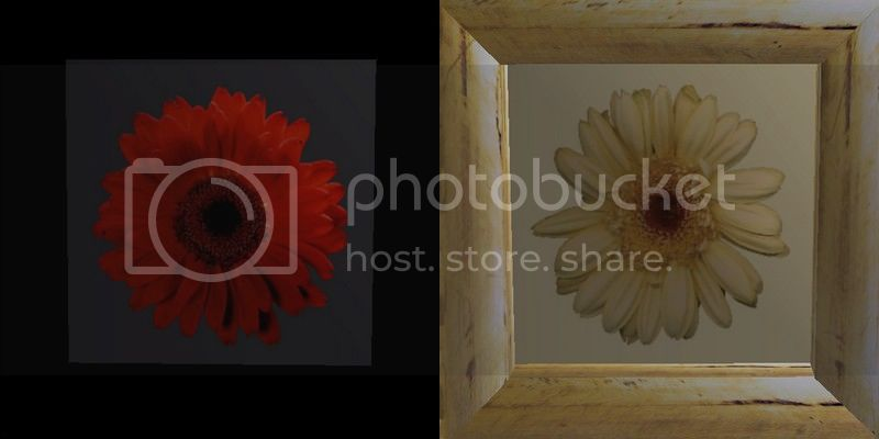 Flowery Picture-Frame - New Mesh by Anidup RedYellow