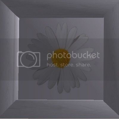 Flowery Picture-Frame - New Mesh by Anidup Boxflowerwhite