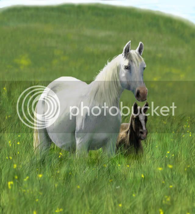 Konji Veliki_i_mali_konj