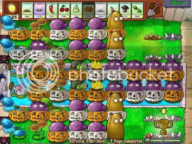 Đội hình Plants vs Zombies của bạn PoolHard