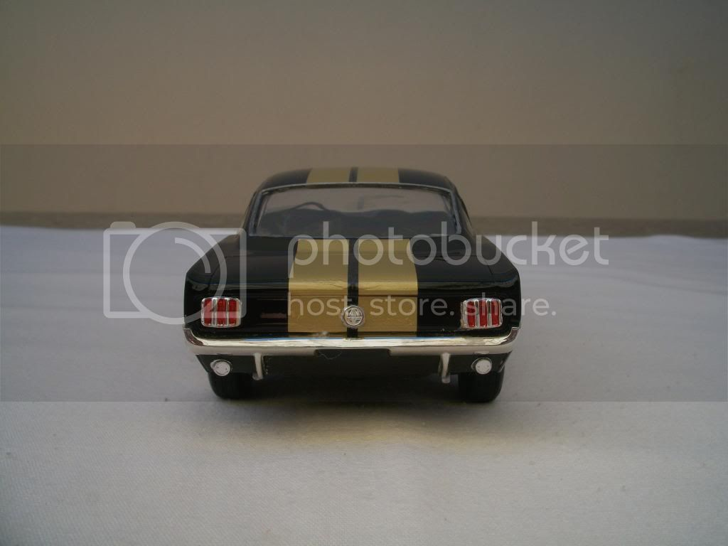 Shelby GT-350 100_3853_zps9ae6654d