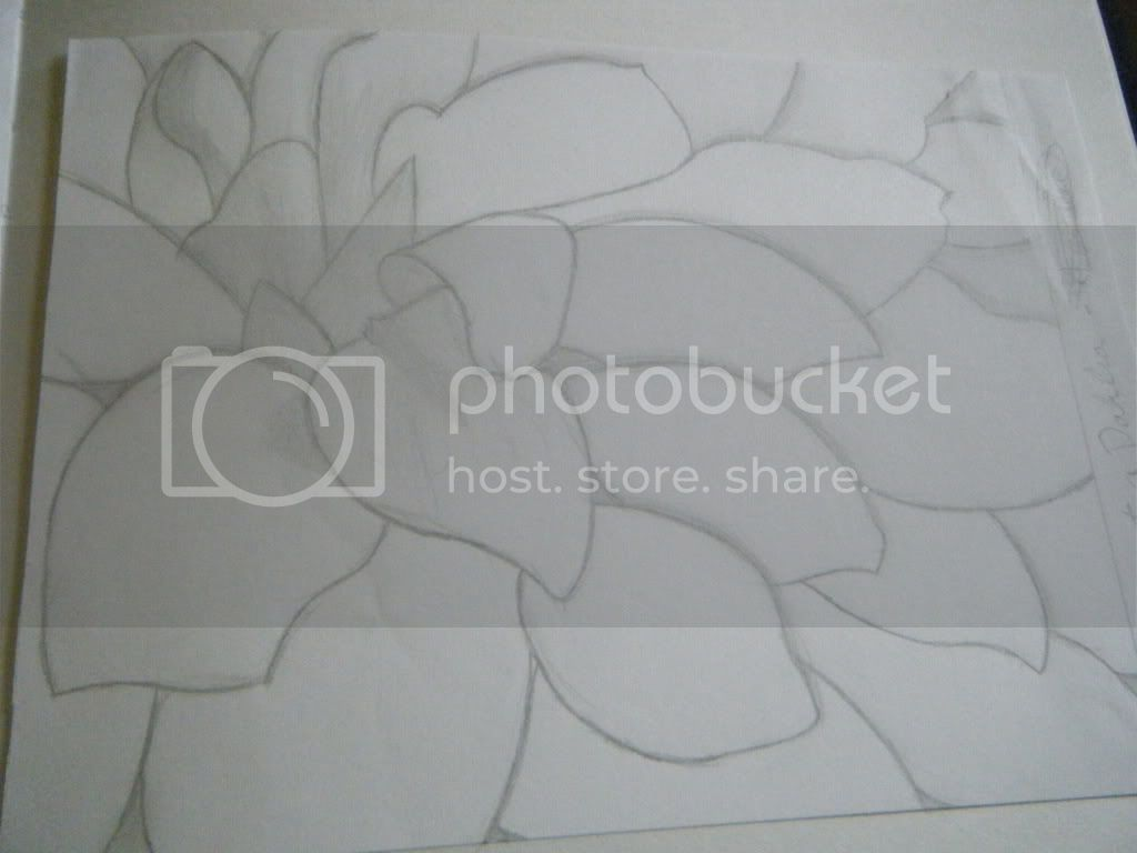 Drawing and other art pieces Sketches012
