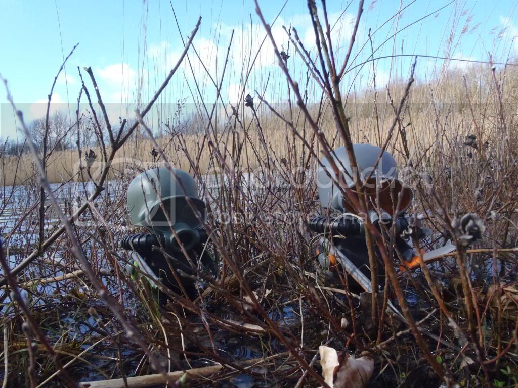 The photos that didn't make it [PIC HEAVY] P3230172_zps6deb3efd