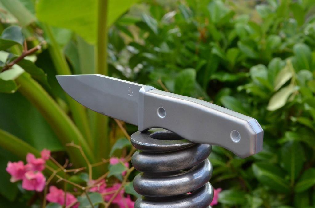 les couteaux du trefle - Page 5 DSC_0612_zps081d804d