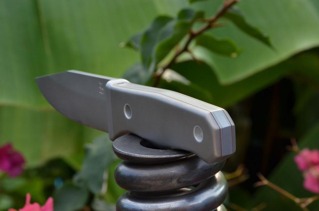 les couteaux du trefle - Page 5 DSC_0617_zps257579bc