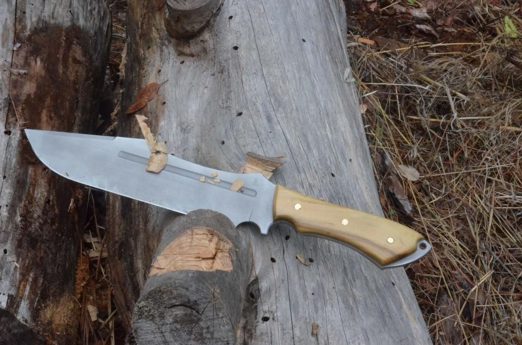 les couteaux du trefle - Page 4 DSC_0649_zps7184547e