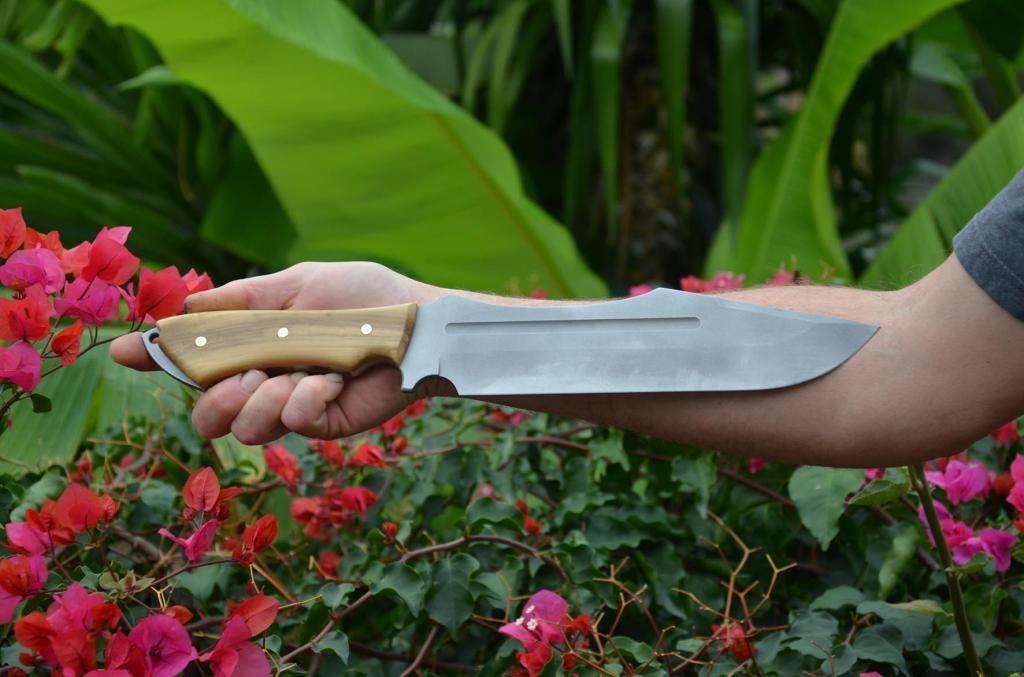 les couteaux du trefle - Page 5 DSC_0654_zps5d66bfc6