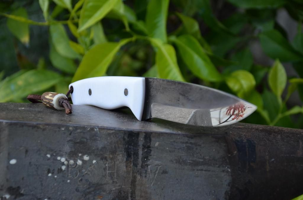 les couteaux du trefle - Page 6 DSC_0837_zpsdb31d3b4