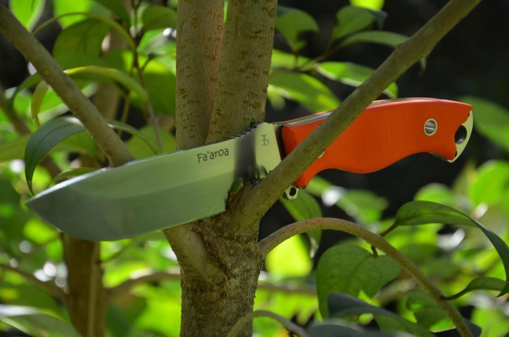 les couteaux du trefle - Page 6 DSC_0851_zpsa22519e2