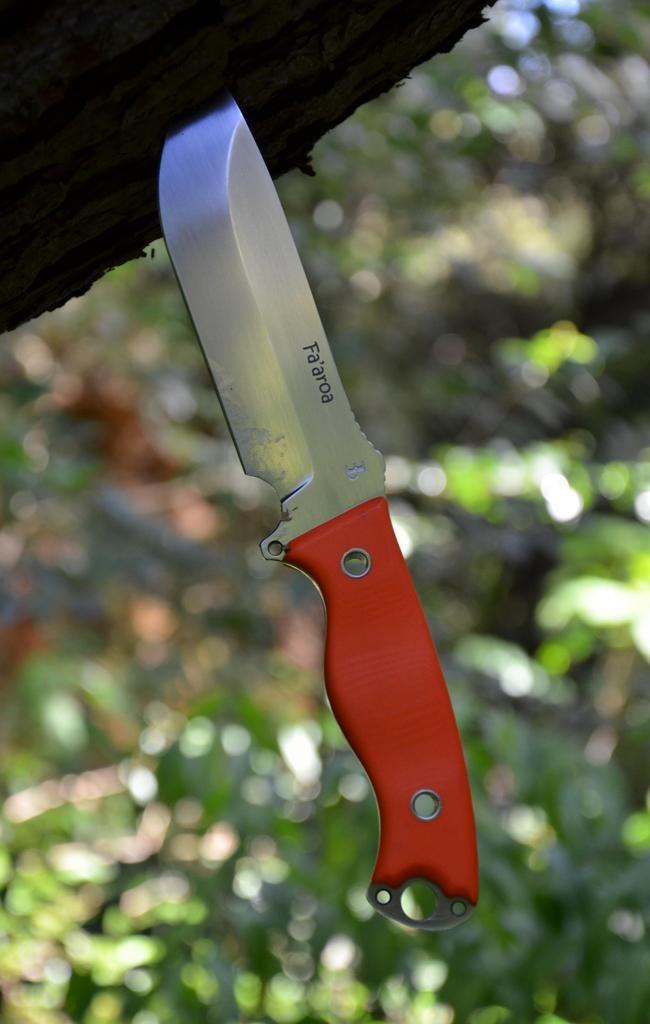 les couteaux du trefle - Page 6 DSC_0854_zps94774ec0