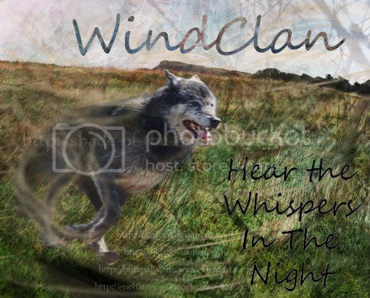HTML Pages- Graphics Needed! WindClancopy-1
